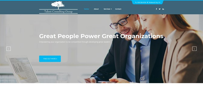 Talent Consulting Group